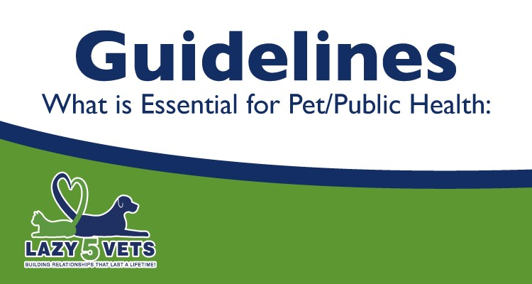 Guidelines for What is Essential for Pet/Public Health – COVID-19