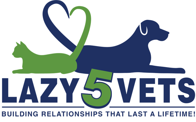Lazy 5 Vets